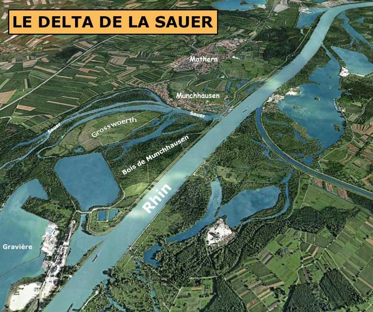 Munchhausen: le delta de la Sauer