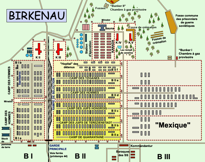 Auschwitz Birkenau: plan général du camp