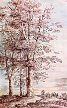 Lucas van Uden: paysage avec grands arbres. Plume et couleurs à l'eau, 34,3 x 21,5 cm. Hambourg, Kunsthalle