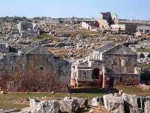 Syrie du nord: ruines de Serjilla, Vè
