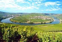 La vallée de la Moselle en Allemagne. Une région viticole et touristique de premier plan