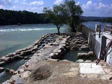 Rheinfelden en Bade: passe à poisson sur le Rhin