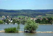 Le Rhin à Walluf près de Wiesbaden