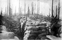 Le Linge: tranchée allemande de la 2ème compagnie du 187è régiment d'infanterie au Schratzmännele