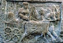 Chariot de marchandises. Bas relief en grès trouvé à Koenigshoffen. Musée archéologique de Strasbourg