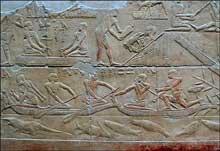 Mastaba de Kagemni: magnifiques bas reliefs de scènes quotidiennes. (Site Egypte antique)