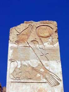 Deir el-Bahari: le temple funéraire de la reine Hatchepsout Maâtkarê. Relief du dieu Horus. (Site Egypte antique)