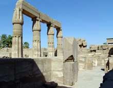 """Karnak: le grand temple d'Amon. Jardin botanique. Le """"jardin botanique"""" est un vestibule dans lequel Thoutmosis III fera représenter la faune et la flore rapportées de ses campagnes en Asie. Il introduira la poule en Egypte. Les animaux semblent se diri"""