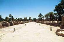 Louxor: le temple d'Amon-Rê: l'allée des sphinx menant au temple de Karnak. (Site Egypte antique)