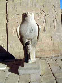 Horus faucon. Temple d'Edfou. (Histoire de l'Egypte ancienne)