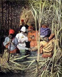 La délimitation de la frontière du Congo et du Cameroun entre la France et l'Allemagne. Illustration du «Petit Journal», novembre 1913