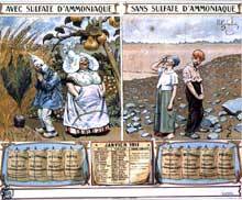 Almanach paysan de 1911: l'invitation au progrès en milieu paysan