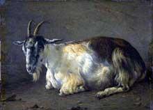 Jacques Raymond Brascassat: chèvre couchée. Huile sur toile, 26 x 36 cm. Bordeaux, musée des Beaux Arts