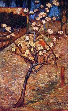 Vincent Van Gogh: poirier en fleurs. Avril 1888. Huile sur toile, 73 x 46 cm. Amsterdam, Rijksmuseum Vincent van Gogh