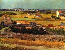 Vincent Van Gogh: jardins de maraîchers dans la Crau. Juin 1888. Huile sur toile, 72,5 x 92 cm. Amsterdam, Rijksmuseum Vincent Van Gogh