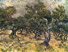 Vincent Van Gogh: les oliviers. Septembre – décembre 1889. Huile sur toile, 72 x 92 cm. Otterlo, Rijksmuseum Kröller-Müller