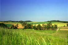 Le pays de Hanau. Paysage entre Lixhausen et Kirrwiller. (La maison alsacienne)