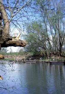Offendorf: la nature retrouvée..