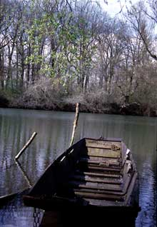 Offendorf: barque à fond plat, très caractéristique de la région