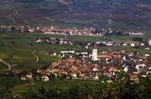 Ammerschwihr: vue générale. Au fond, le village de Kientzheim. (La maison alsacienne)