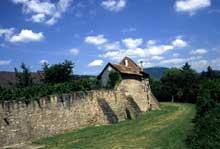 Bergheim: les remparts et les anciens fossés. Au fond, le Haut Koenigsbourg