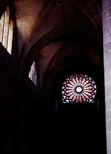 Rouffach: Notre Dame de l'Assomption: la rose