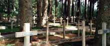 Le cimetière Duchène, mémorial de la bataille de la Tête des Faux