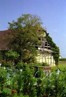 Urchenheim. Jardin. (La maison alsacienne)