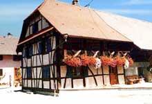 Zaessingue: maison sundgauvienne du XIXè provenant d'Helfrantzkirch. (La maison alsacienne)