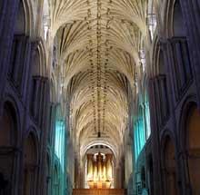 Norwich: la cathédrale, nef