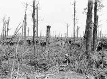 Le champ de bataille de la seconde bataille d'Ypres. Début 1915
