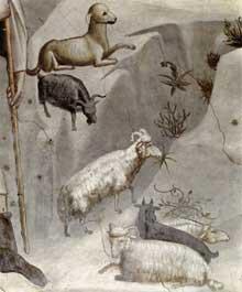 Giotto : Scènes de la vie de Joachim: le rêve de Joachim, détail. 1304-1306. Fresque. Padoue: la chapelle Scrovegni ou chapelle de l'Arena