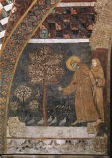 Maître de Saint François: scènes de la vie de saint François: François prêchant aux oiseaux. Entre 1260 et 1280. Fresque. Assise, église inférieure saint François