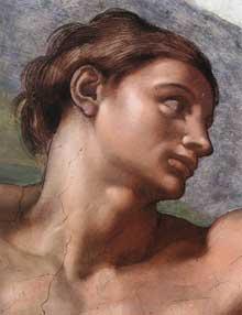 La création d'Adam. 1510. Fresque, 280 x 570 cm. Chapelle Sixtine, Vatican. Détail: le visage d'Adam