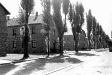 AuschwitzI: baraque