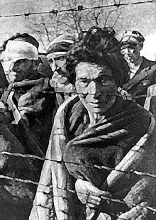 pourquoi auschwitz reste le symbole de la barbarie nazie