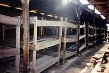 """Auschwitz-Birkenau: intérieur d'une baraque de type """"écurie"""""""