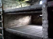 Auschwitz-Birkenau: intérieur d'une baraque en pierre. Les châlis