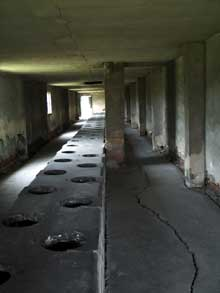 Auschwitz-Birkenau: les latrines du camp des femmes