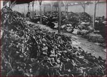 Auschwitz-Birkenau: le «Canada