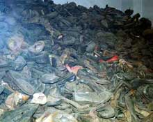 Auschwitz-Birkenau: chaussures au Canada