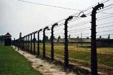 Auschwitz-Birkenau: l'enceinte de barbelés