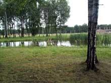 Auschwitz-Birkenau: l'étang où l'on jetait les cendres près du KV