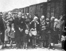Auschwitz-Birkenau: arrivée et sélection de juifs Hongrois en été 1944