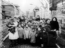 Auschwitz-Birkenau: la libération