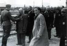 Auschwitz-Birkenau: une sélection. La femme est Geza Lajtbs, de Budapest