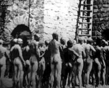 Auschwitz-Birkenau: avant «le bain»… tous ne savaient pas, mais tous étaient frappés