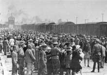 Auschwitz-Birkenau: une sélection de juifs hongrois, printemps 1944