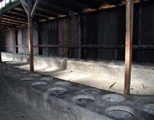 Auschwitz-Birkenau: les «toilettes»