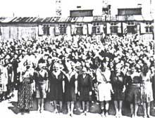 Auschwitz-Birkenau: un appel
